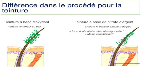 Différence dans le procédé pour la teinture des cils, par Carole Institut à Talmont Saint Hialaire